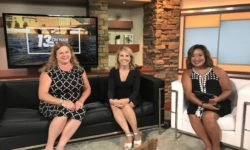 Kristyn Peck and Susan McElheny Interview on WZZM-13